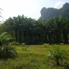 Land for Sale 14400 sq.m