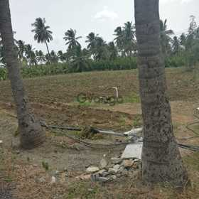 2 acre agricultural land for sale