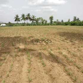 3 acre agricultural land for sale