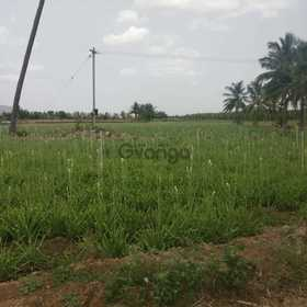 5 acre agricultural land for sale