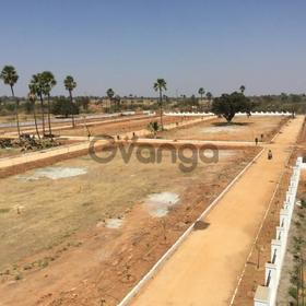 tirupati open plots for sale per ank 25000 to 33000