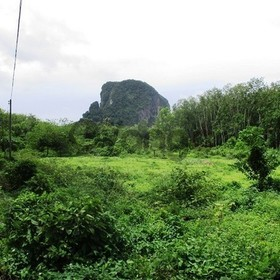 Building Land for Sale 10612 sq.m, Ban Klong Son, Mountain view