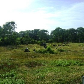 Land for Sale 17600 sq.m, Had Yao