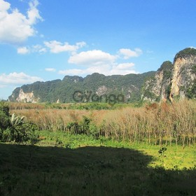 Land for Sale 22400 sq.m, Khao Thong