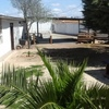 Rustic finca with chalet - Andalucia - Malaga - Campillos