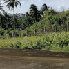 5.2 Hectares Lot for sale