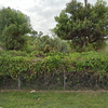 Land for Sale 1.11 acre, 23050 SW 117th Ave, Zip Code 33170
