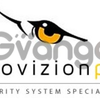 Senior Level CCTV & Door Access Technician