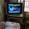Samsung TV /Aqua Guard/ Stabilizer