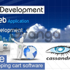 Software Development and Web Design Services