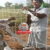 Chain link fencing | VRP Fencing Contractors in Chennai