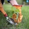 Gardeners Service in HSR Layout Bangalore