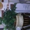 30 Inch Tall Genuine Wood Planter