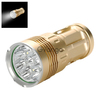 Skyray CREE T6 LED Flashlight (Gold)