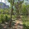 Land for Sale 8800 sq.m, Ao Nang