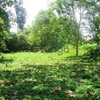 Land for Sale 1032 sq.m, Chong Plee