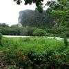 Land for Sale 3986 sq.m, Ao Nang