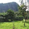 Land for Sale 6400 sq.m, Chong Plee