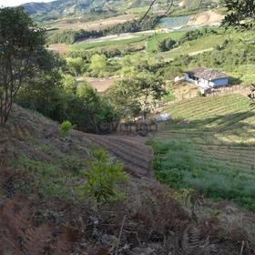 venta de terreno entre Marinilla y el Peñol Antioquia
