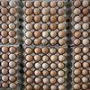 Venta de huevos para negocio