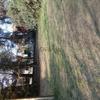 Vendo terreno en Santa Rosa L/P