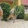 2 Recámaras Apartamento en venta 60 m², Orihuela