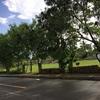 Vendo de OPORTUNIDAD Magnifico Solar en Avenida de Las Américas