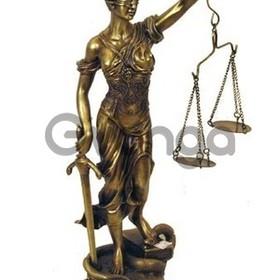 Участие Адвоката в исполнительном производстве.