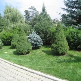 Ландшафтный дизайн в Алматы.