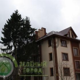 Продается квартира 3-ком 90 м² Луговая