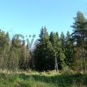 Продается участок 23 сот Дача Поселка Николаева, 1