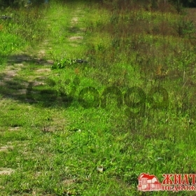 Продается Земельный участок под ИЖС 12 сот деревня  Кузнецы,