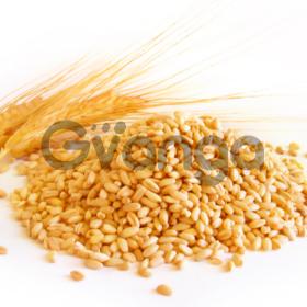 Пшеница 2 кл на экспорт Одесса. Поставка CIF