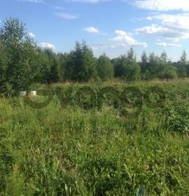 Продается участок 12 сот Березка-3 СНТ сад, 1