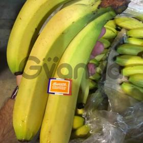 Продаем бананы из Испании