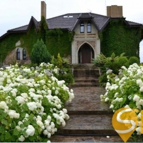 Продается дом 8-ком 1000 м²