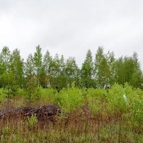 Продается земельный участок 8.5 сот Информнаука
