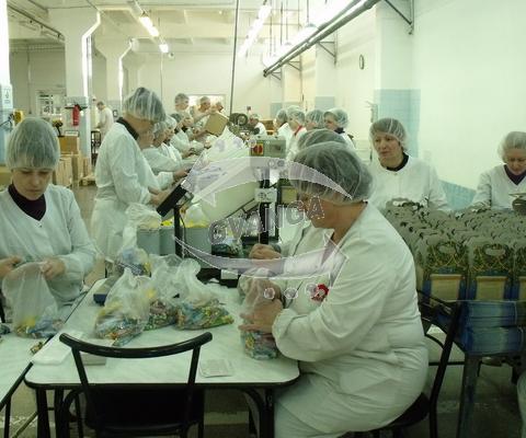 Упаковщики печенья, Польша