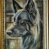"""Картина автора """"Шеба""""-пастель,55х32"""