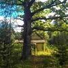 Шикарный участок на опушке соснового леса