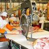 Работа в Польше. Разнорабочий на мясокомбинат