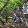 Очаровательный участок 1 Га. у хвойного леса, домик и баня