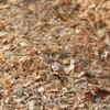 Опилки лиственных пород деревьев