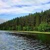 Шикарный участок 50 соток рядом с озером под Печорами