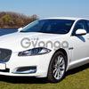Jaguar XF белый 2014 аренда