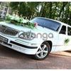 054 Лимузин Volga аренда