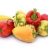 Семена сладкого перца Yanika F1 / Яника F1 фирмы Китано