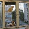 """Балкончик для кошки на окно. """"Броневик"""" Днепр."""