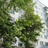 Продается квартира 2-ком 52.3 м² строителей пр-т.,25