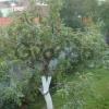Продается дом 3-ком 60 м² хутор Никонорово